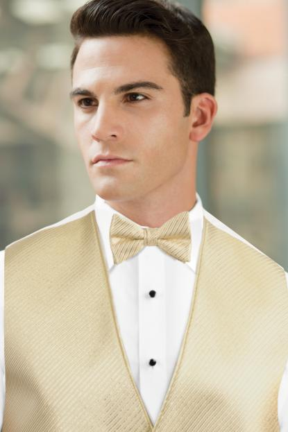 Synergy Gold Metallic Bow Tie