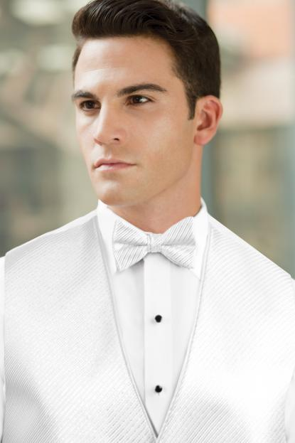 Synergy Silver Metallic Bow Tie