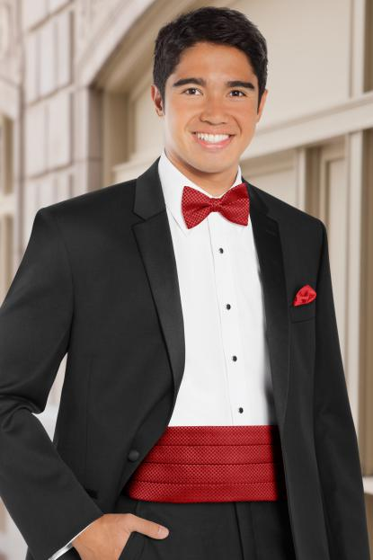 Dot Apple Red Cummerbund
