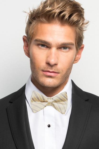 Champagne Striped Bow Tie