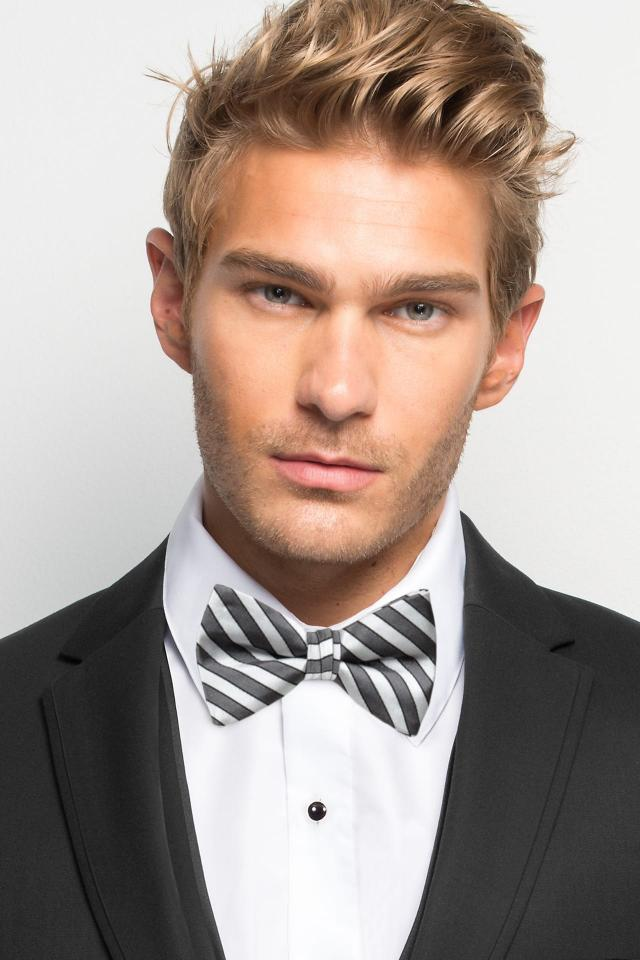 Platinum Striped Bow Tie